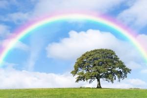 rainbow-landscape[1]
